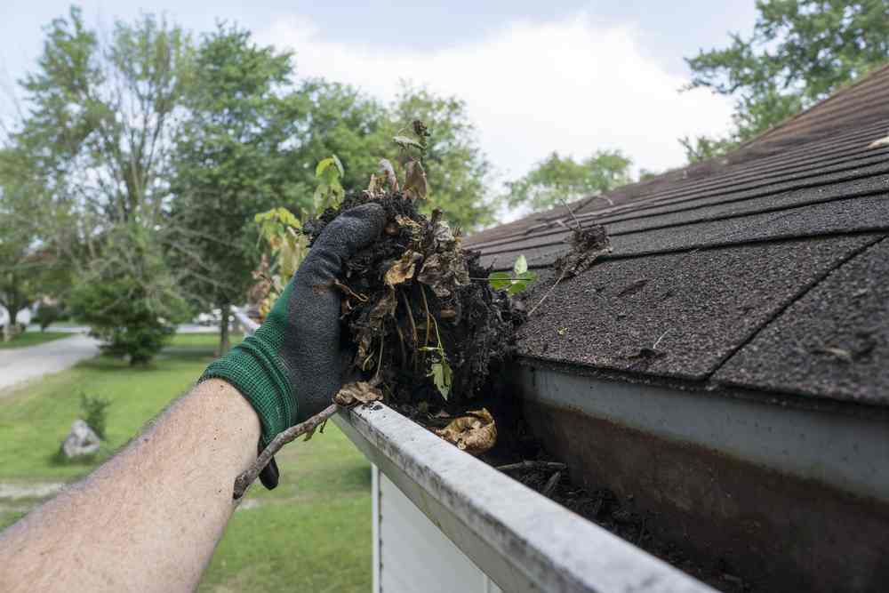 best type of ladder for cleaning gutters